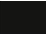 Bruno Manser Fonds Logo